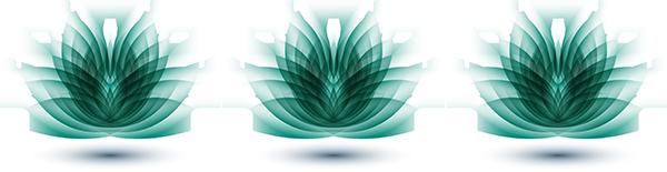 Lotus_Bloom_3
